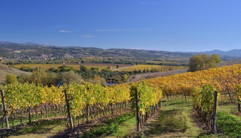 Toscana Italy MontalcinoToscana Italy Montalcino