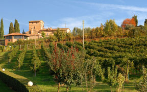 Villa Palagetto San Gimignano