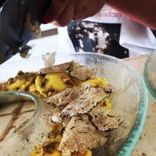 toscana-italy-truffle-sanminiato-pisa-1